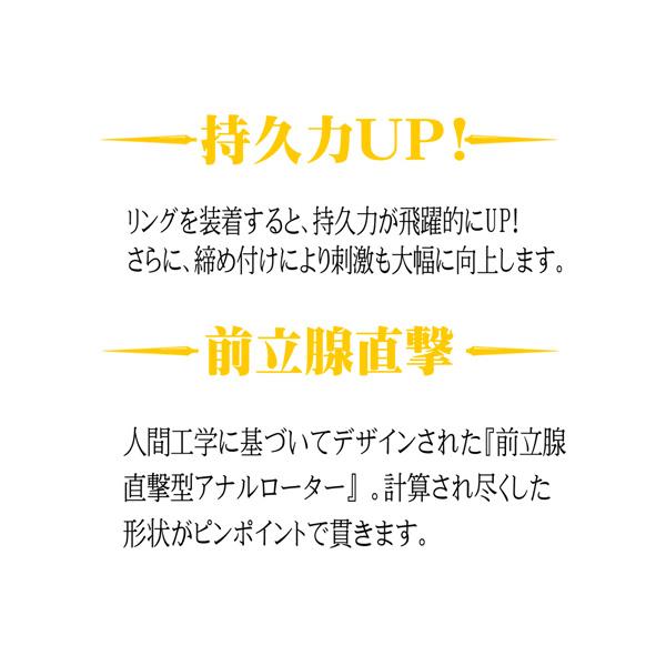 情趣用品日本 ANAL ANCHOR 両成敗 TYPE-p