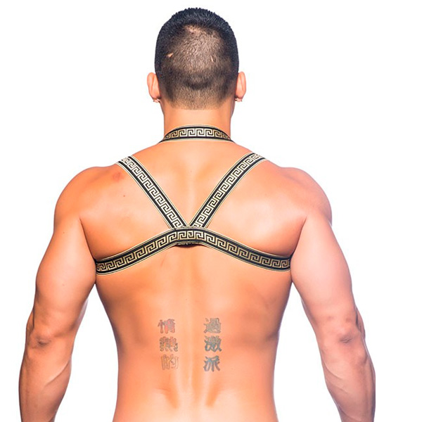 Andrew Christian MASSIVE Gladiator Harness