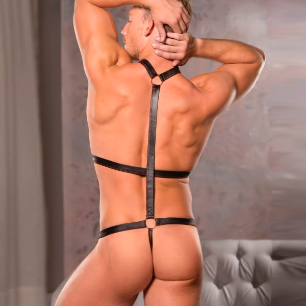 Allure Lingerie Zeus Wet Look Harness