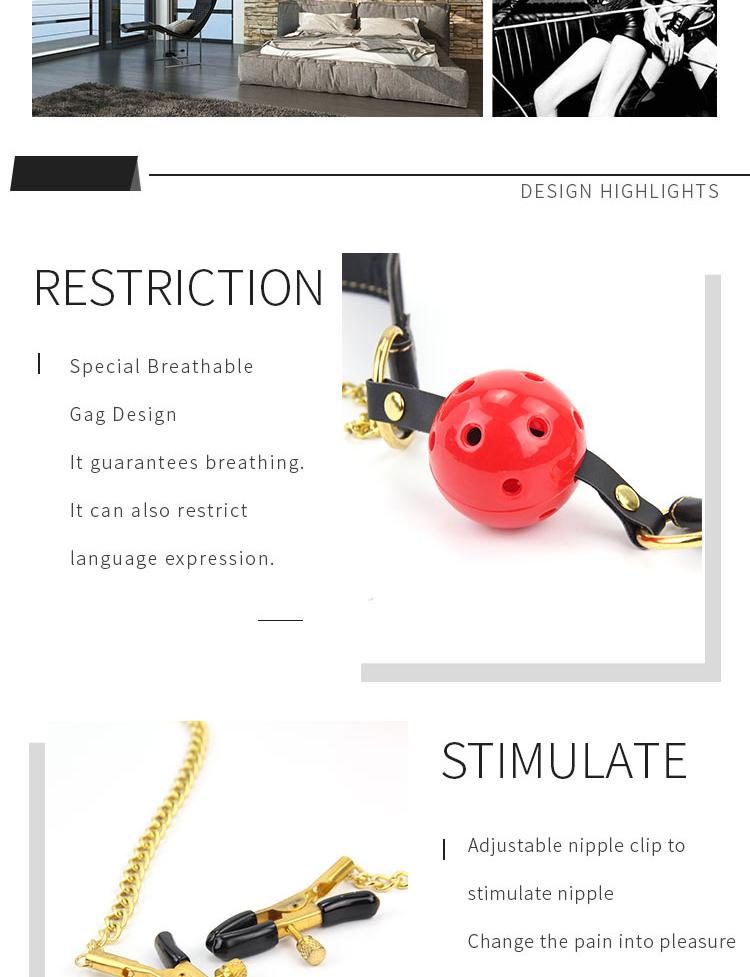 RoomFun Gag and Adjustable Clamps